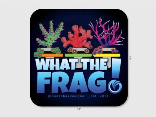 What The Frag Sticker 2.8x2.8 by Oceanbox Designs